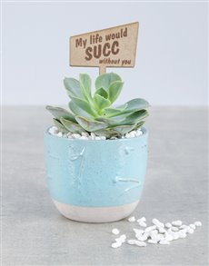 flowers: My Life would succ without you!