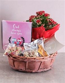 flowers: Owl Always love you Snack Basket!