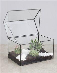 plants: Cactus and Succulent House!
