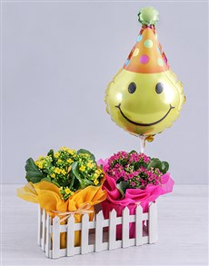 flowers: Kalanchoe Plants and Smiley Balloon in Fence!