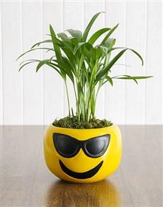 flowers: Areca Bamboo in Sunglasses Emoji Pot!