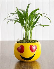 flowers: Love Palm in Heart Eyes Emoji Pot!