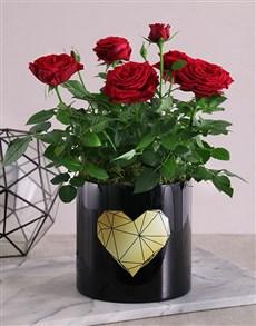 flowers: Golden Heart Potted Rose Bush!