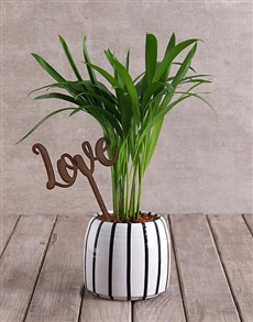 flowers: Love Palm with Wooden Love Cutout!