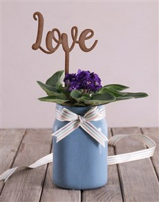 flowers: African Violet with Wooden Love Cutout!