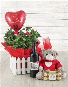 flowers: 14cm Rose Bush, Wine, Balloon, Teddy & Ferrero!