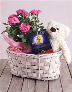 flowers: Roses and Cuddles Gift Basket!
