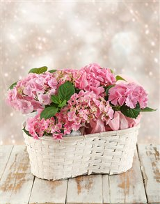 flowers: Triple Pink Hydrangea Basket!
