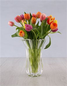 gifts: Tulips in a Elixer Crystal Vase!