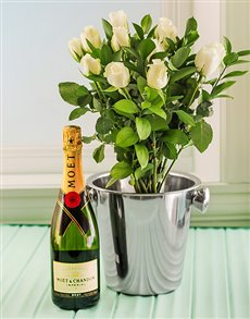 flowers: White Roses, Moet and Ice Bucket!