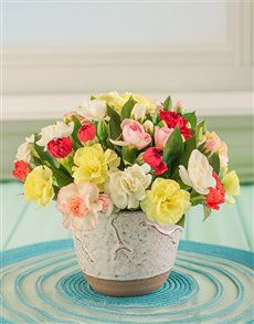 flowers: Pink and white Gerberas in a Vase!