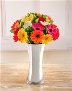 flowers: Mixed Gerberas in a Silver Vase!