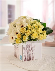 gifts: Box of Serene Cream Roses and White Gerberas!