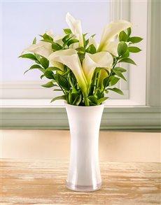 gifts: Timeless Elegance Arum Lily Arrangement!