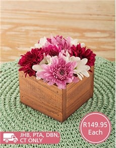 flowers: Pink and Red Sprays in Rustic Wooden Box!