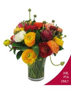 flowers: Radiant Ranunculus!