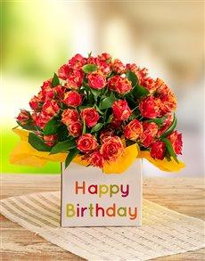 flowers: Orange Kenyan Cluster Roses in a Birthday Box!