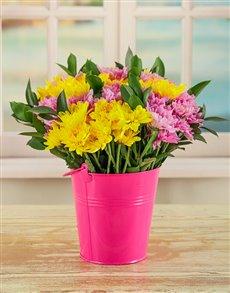 flowers: Bucket Full of Daisies!