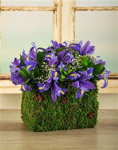 flowers: Purple Iris Purse!