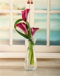 flowers: Sophisticated Simplicity!