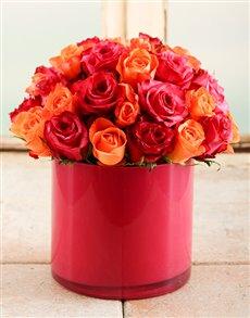 flowers: Fire Star Rose Vase!