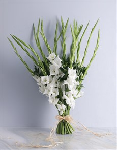 gifts: Gladiolus of Love Bouquet!