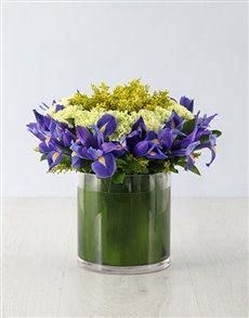 gifts: Royal Iris Crown Arrangement!