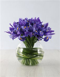 gifts: The Iris Fish Bowl!