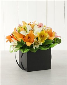 flowers: Mixed Asiflorum Lilies in Black Box!