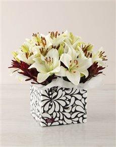 flowers: White Asiflorum Lily Box!