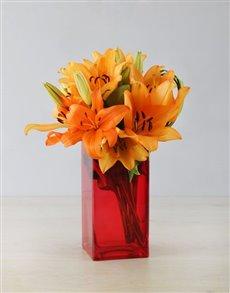 flowers: Orange Asiflorum Lily and Leriopi Vase!