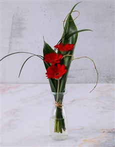 flowers: Red Stepped Gerberas!
