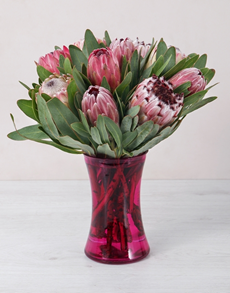 flowers: Mixed Proteas in Red Cylinder Vase!