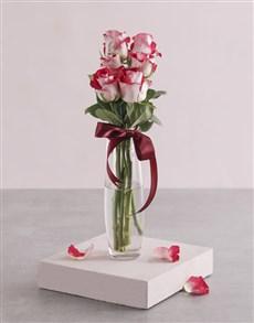 flowers: Variegated Roses in Tall Bullet Vase!