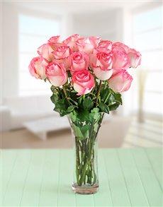 flowers: Pink Giant Ethiopian Roses in a Vase!