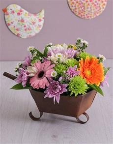flowers: Magic Wheelbarrow Mix!