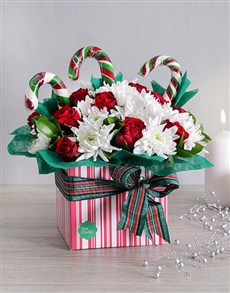 flowers: Christmas Candy Cane Box!