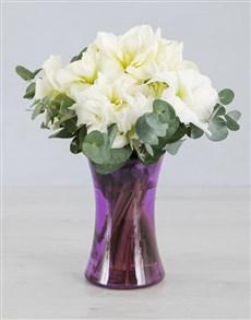 gifts: Cut Amaryllis in Purple Cylinder Vase!