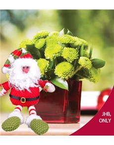 flowers: Square Vase of Green Sprays with Christmas Deco!