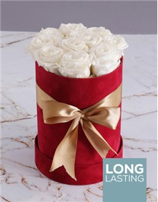 flowers: Preserved White Roses in Tall Red Suede Box!