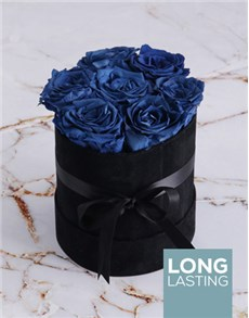 flowers: Preserved Cobalt Roses in a Black Suede Box!