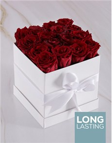 flowers: Red Preserved Roses in a White Box!
