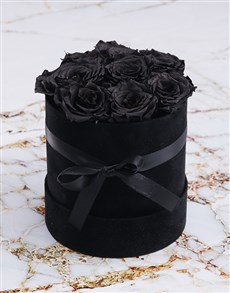 flowers: Black Preserved Roses in a Small Round Box!