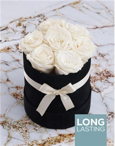 gifts: White Preserved Roses in a Small Round Box!