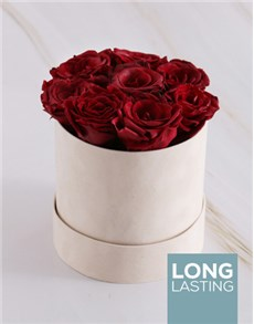 flowers: Red Preserved Roses in a Cream Box!