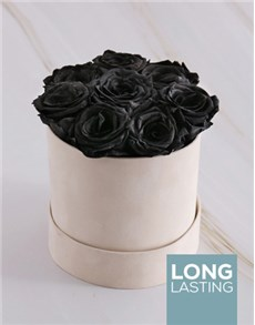 flowers: Black Preserved Roses in a Cream Box!