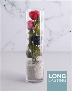 flowers: Tall Cylinder With Three Stacked Preserved Roses!
