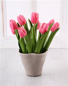 flowers: Pink Tulips in Ceramic!