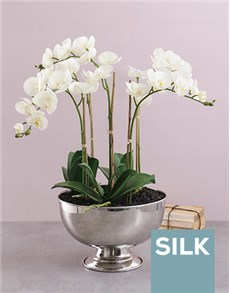 flowers: Five Silk Orchids in a Silver Bowl!