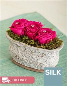 flowers: Petit Pink Rose Rage!